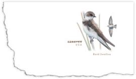 BankSwallow-StampedEnvelope-slideshow
