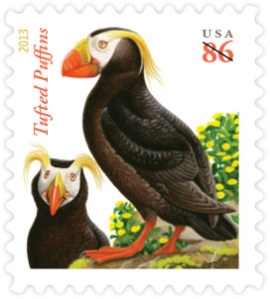 Tufted Puffins (click to order)