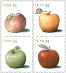 Apples33-2013-block4-BGv1