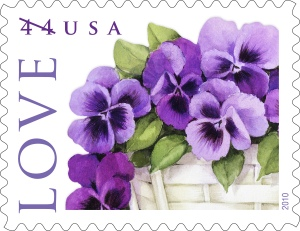 LovePansies44up-single-BGv1